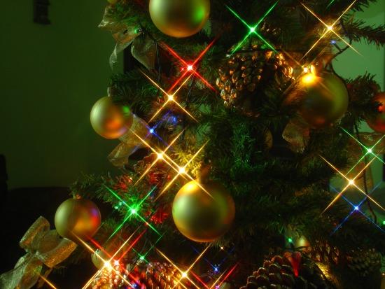 Tree Lighting in Melbourne Beach, FL
